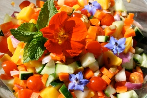 colors_salad_cproppe